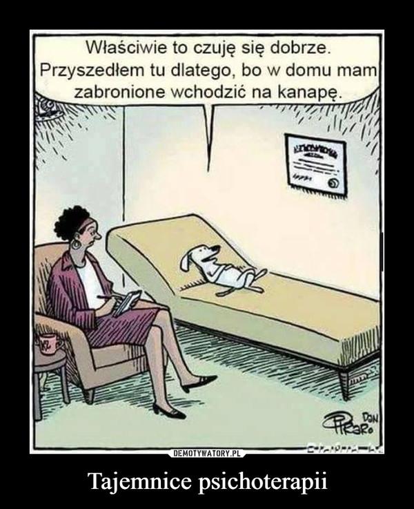 Tajemnice psichoterapii –