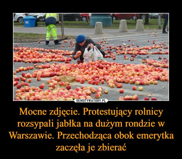Mocne zdjęcie. Protestujący rolnicy rozsypali jabłka na dużym rondzie w Warszawie. Przechodząca obok emerytka zaczęła je zbierać –