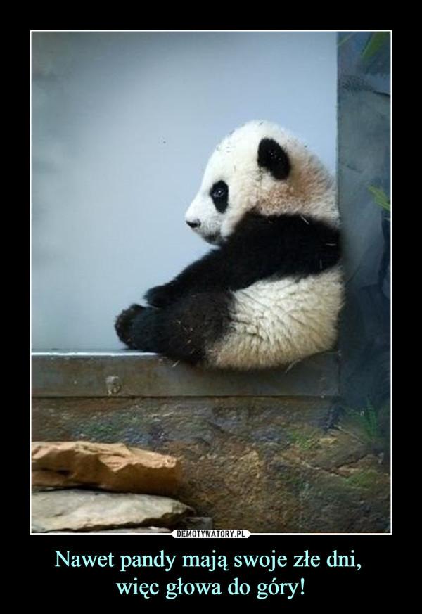 Nawet pandy mają swoje złe dni, więc głowa do góry! –