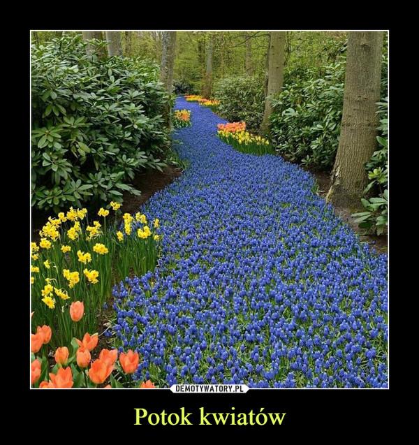 Potok kwiatów –