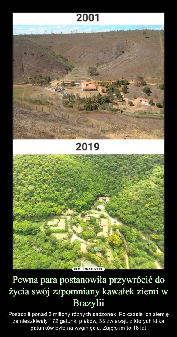 Pewna para postanowiła przywrócić do życia swój zapomniany kawałek ziemi w Brazylii – Posadzili ponad 2 miliony różnych sadzonek. Po czasie ich ziemię zamieszkiwały 172 gatunki ptaków, 33 zwierząt, z których kilka gatunków było na wyginięciu. Zajęło im to 18 lat