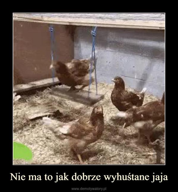 Nie ma to jak dobrze wyhuśtane jaja –