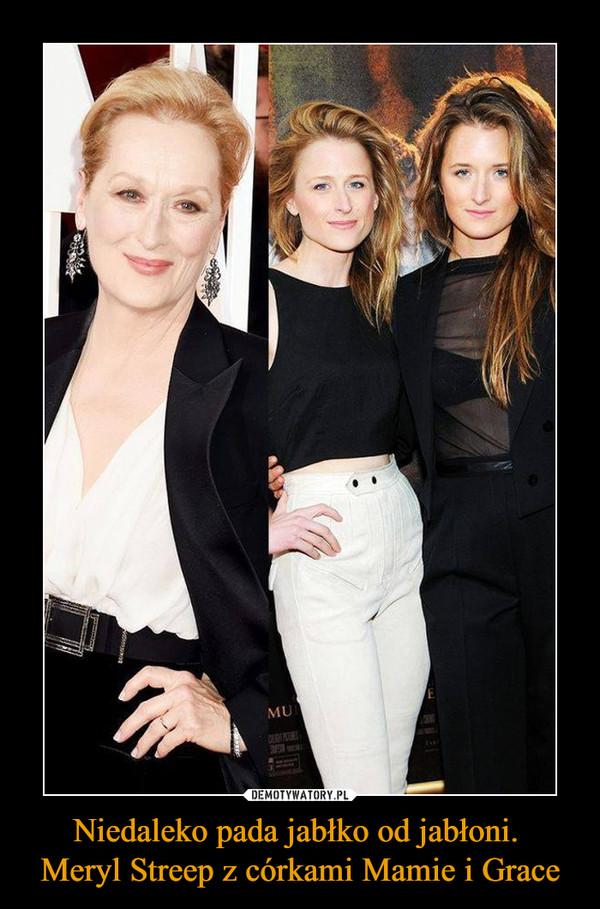 Niedaleko pada jabłko od jabłoni. Meryl Streep z córkami Mamie i Grace –