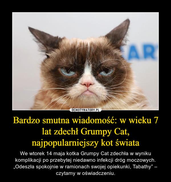 """Bardzo smutna wiadomość: w wieku 7 lat zdechł Grumpy Cat, najpopularniejszy kot świata – We wtorek 14 maja kotka Grumpy Cat zdechła w wyniku komplikacji po przebytej niedawno infekcji dróg moczowych. """"Odeszła spokojnie w ramionach swojej opiekunki, Tabathy"""" – czytamy w oświadczeniu."""