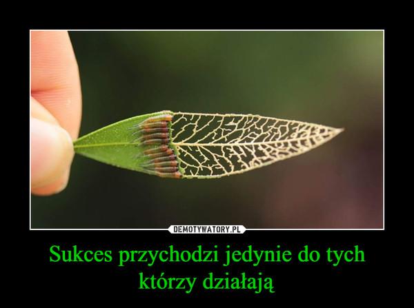 Sukces przychodzi jedynie do tych którzy działają –