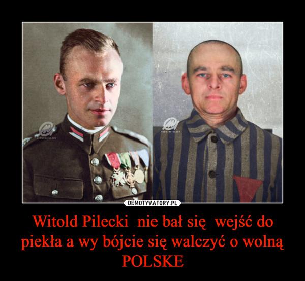 Witold Pilecki  nie bał się  wejść do piekła a wy bójcie się walczyć o wolną POLSKE –