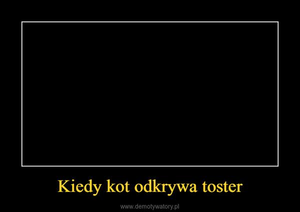 Kiedy kot odkrywa toster –
