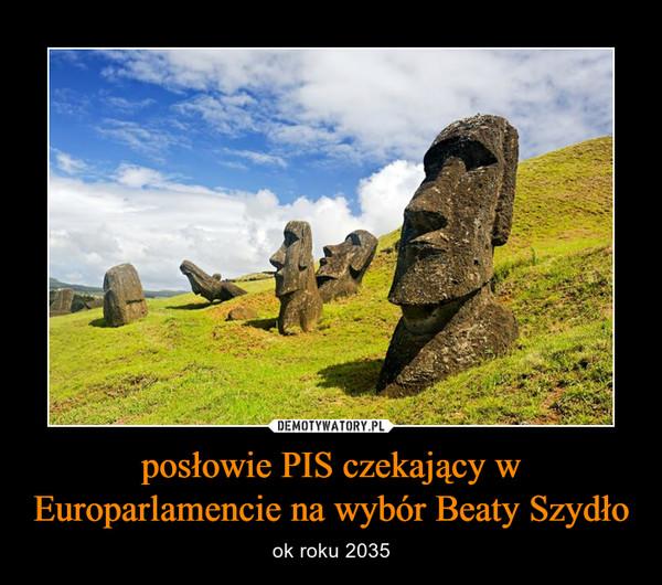 posłowie PIS czekający w Europarlamencie na wybór Beaty Szydło – ok roku 2035