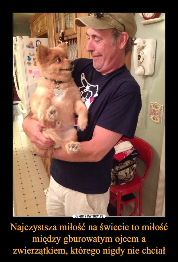 Najczystsza miłość na świecie to miłość między gburowatym ojcem a zwierzątkiem, którego nigdy nie chciał –