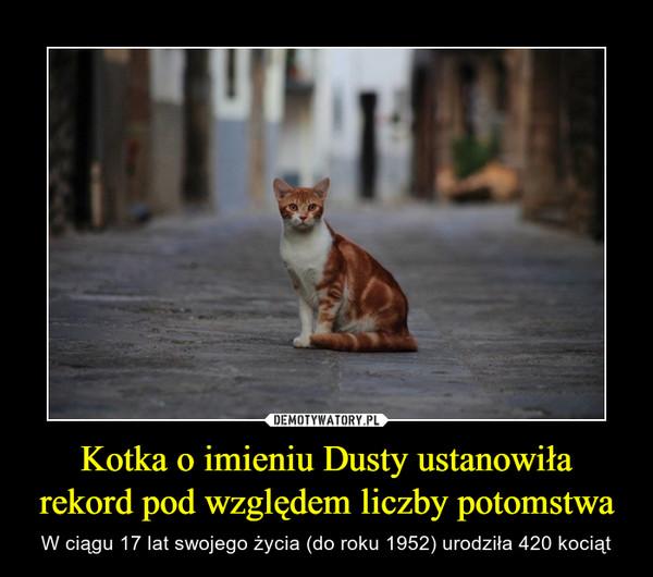 Kotka o imieniu Dusty ustanowiłarekord pod względem liczby potomstwa – W ciągu 17 lat swojego życia (do roku 1952) urodziła 420 kociąt