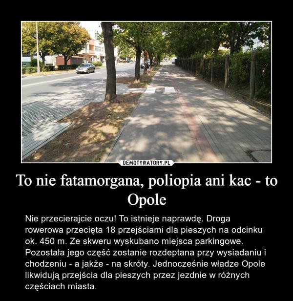 To nie fatamorgana, poliopia ani kac - to Opole – Nie przecierajcie oczu! To istnieje naprawdę. Droga rowerowa przecięta 18 przejściami dla pieszych na odcinku ok. 450 m. Ze skweru wyskubano miejsca parkingowe. Pozostała jego część zostanie rozdeptana przy wysiadaniu i chodzeniu - a jakże - na skróty. Jednocześnie władze Opole likwidują przejścia dla pieszych przez jezdnie w różnych częściach miasta.