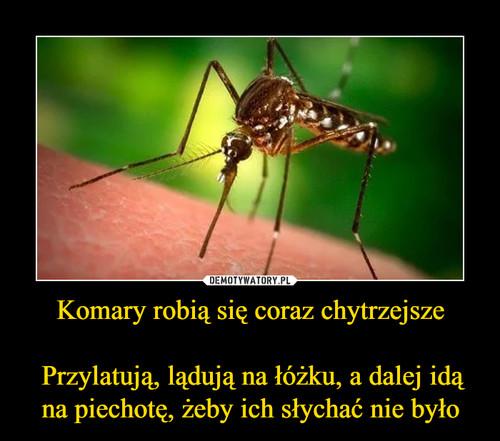 Komary robią się coraz chytrzejsze   Przylatują, lądują na łóżku, a dalej idą na piechotę, żeby ich słychać nie było