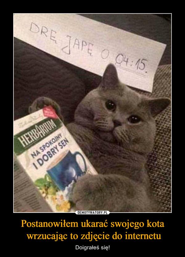 Postanowiłem ukarać swojego kota wrzucając to zdjęcie do internetu – Doigrałeś się!