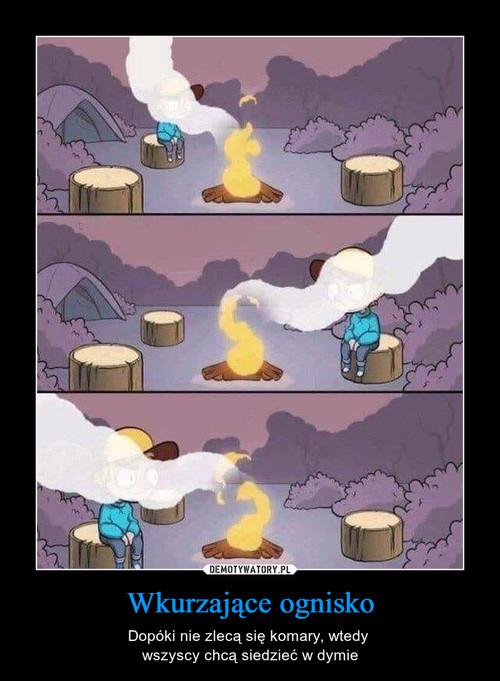 Wkurzające ognisko