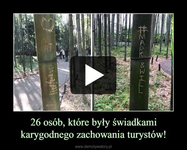 26 osób, które były świadkami karygodnego zachowania turystów! –