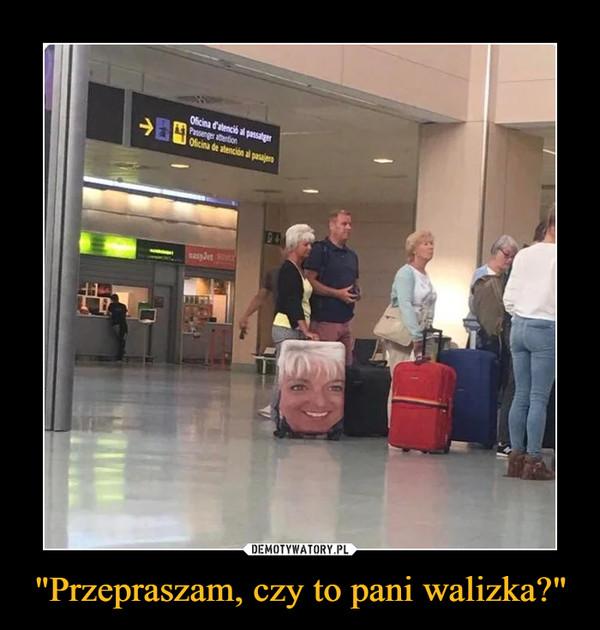 """""""Przepraszam, czy to pani walizka?"""" –"""