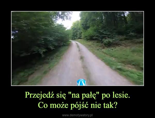"""Przejedź się """"na pałę"""" po lesie.Co może pójść nie tak? –"""