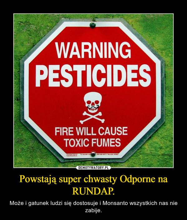 Powstają super chwasty Odporne na RUNDAP. – Może i gatunek ludzi się dostosuje i Monsanto wszystkich nas nie zabije.
