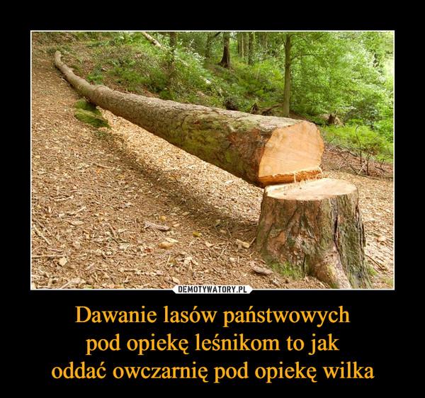 Dawanie lasów państwowychpod opiekę leśnikom to jakoddać owczarnię pod opiekę wilka –