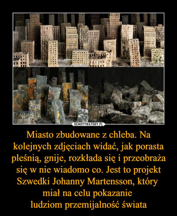 Miasto zbudowane z chleba. Na kolejnych zdjęciach widać, jak porasta pleśnią, gnije, rozkłada się i przeobraża się w nie wiadomo co. Jest to projekt Szwedki Johanny Martensson, który miał na celu pokazanie ludziom przemijalność świata –