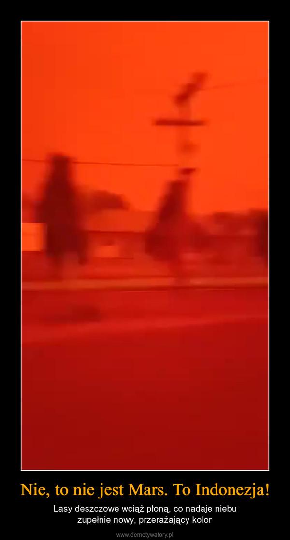 Nie, to nie jest Mars. To Indonezja! – Lasy deszczowe wciąż płoną, co nadaje niebuzupełnie nowy, przerażający kolor