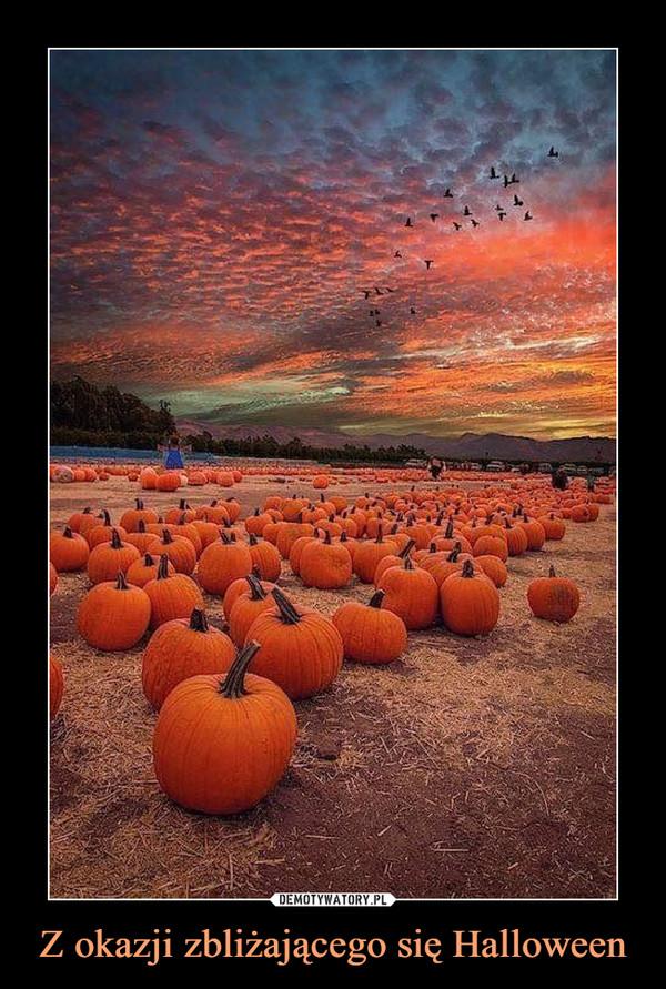 Z okazji zbliżającego się Halloween –