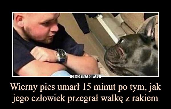 Wierny pies umarł 15 minut po tym, jak jego człowiek przegrał walkę z rakiem –