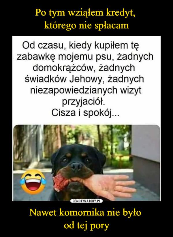 Nawet komornika nie było od tej pory –  Od czasu, kiedy kupiłem tę zabawkę mojemu psu, żadnych domokrążców, żadnych świadków Jehowy, żadnych niezapowiedzianych wizyt przyjaciół. Cisza i spokój...