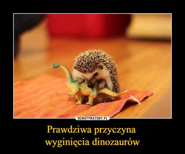 Prawdziwa przyczyna wyginięcia dinozaurów –