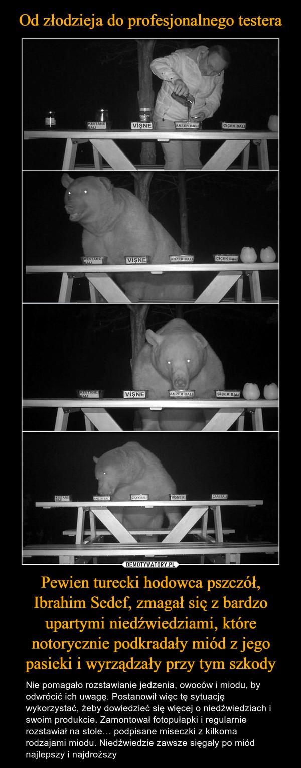 Pewien turecki hodowca pszczół, Ibrahim Sedef, zmagał się z bardzo upartymi niedźwiedziami, które notorycznie podkradały miód z jego pasieki i wyrządzały przy tym szkody – Nie pomagało rozstawianie jedzenia, owoców i miodu, by odwrócić ich uwagę. Postanowił więc tę sytuację wykorzystać, żeby dowiedzieć się więcej o niedźwiedziach i swoim produkcie. Zamontował fotopułapki i regularnie rozstawiał na stole… podpisane miseczki z kilkoma rodzajami miodu. Niedźwiedzie zawsze sięgały po miód najlepszy i najdroższy