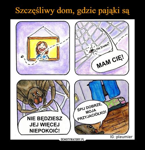 Szczęśliwy dom, gdzie pająki są