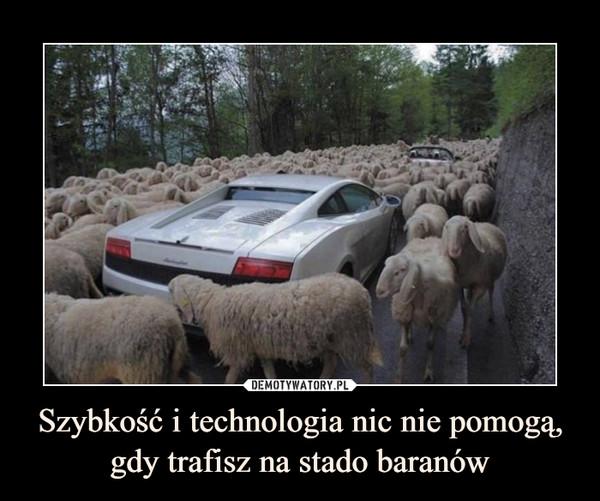 Szybkość i technologia nic nie pomogą, gdy trafisz na stado baranów –