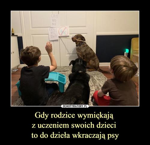 Gdy rodzice wymiękają  z uczeniem swoich dzieci  to do dzieła wkraczają psy
