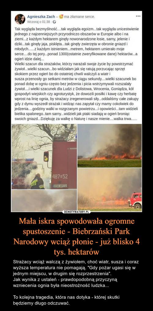 Mała iskra spowodowała ogromne spustoszenie - Biebrzański Park Narodowy wciąż płonie - już blisko 4 tys. hektarów
