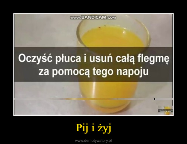 Pij i żyj –