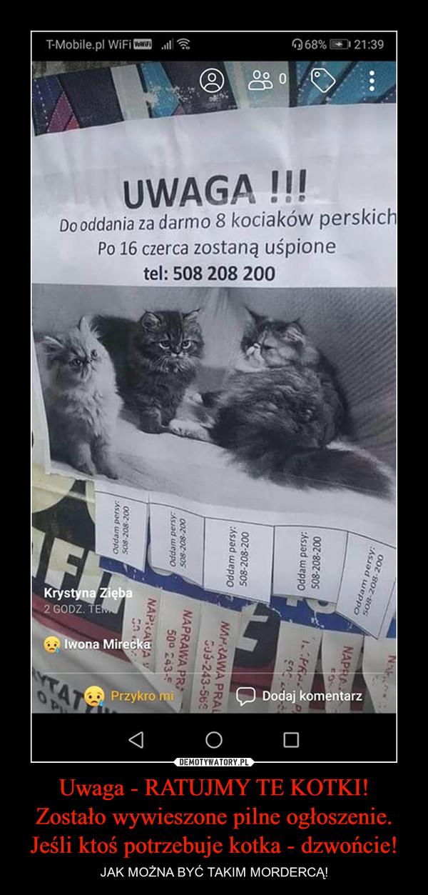 Uwaga - RATUJMY TE KOTKI!Zostało wywieszone pilne ogłoszenie. Jeśli ktoś potrzebuje kotka - dzwońcie! – JAK MOŻNA BYĆ TAKIM MORDERCĄ!