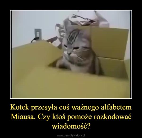 Kotek przesyła coś ważnego alfabetem Miausa. Czy ktoś pomoże rozkodować wiadomość? –