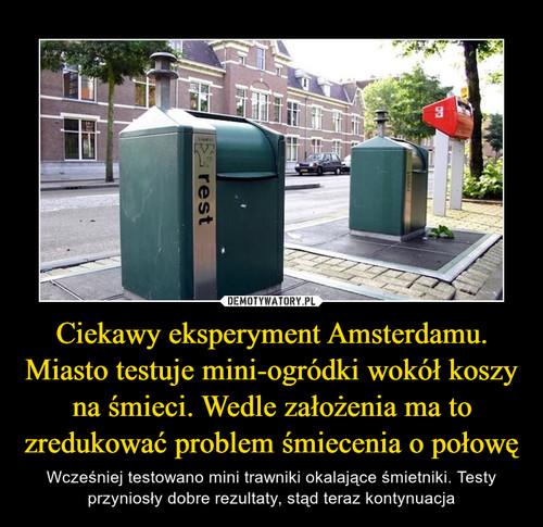 Ciekawy eksperyment Amsterdamu. Miasto testuje mini-ogródki wokół koszy na śmieci. Wedle założenia ma to zredukować problem śmiecenia o połowę