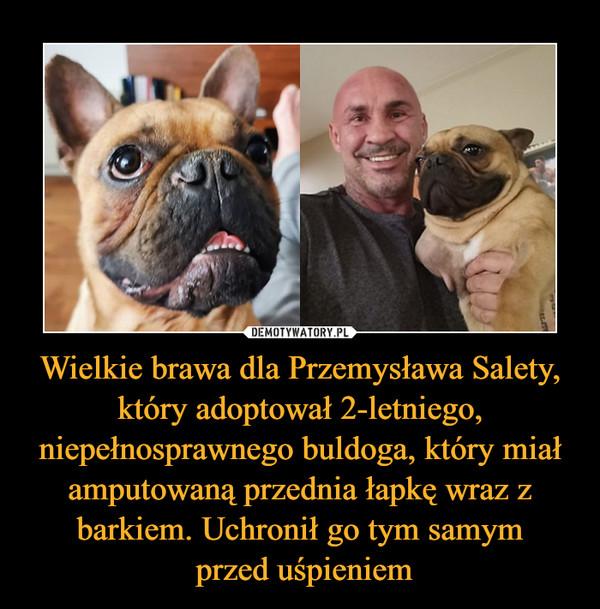 Wielkie brawa dla Przemysława Salety, który adoptował 2-letniego, niepełnosprawnego buldoga, który miał amputowaną przednia łapkę wraz z barkiem. Uchronił go tym samym przed uśpieniem –