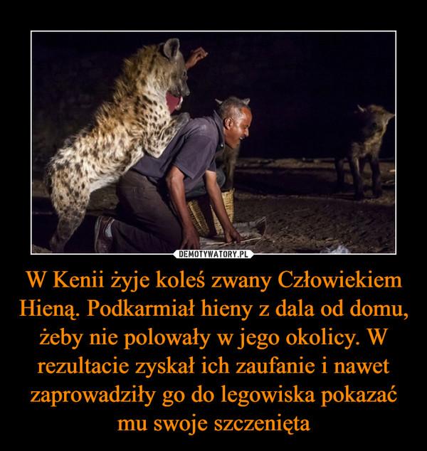 W Kenii żyje koleś zwany Człowiekiem Hieną. Podkarmiał hieny z dala od domu, żeby nie polowały w jego okolicy. W rezultacie zyskał ich zaufanie i nawet zaprowadziły go do legowiska pokazać mu swoje szczenięta –