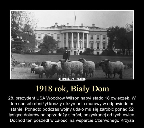 1918 rok, Biały Dom