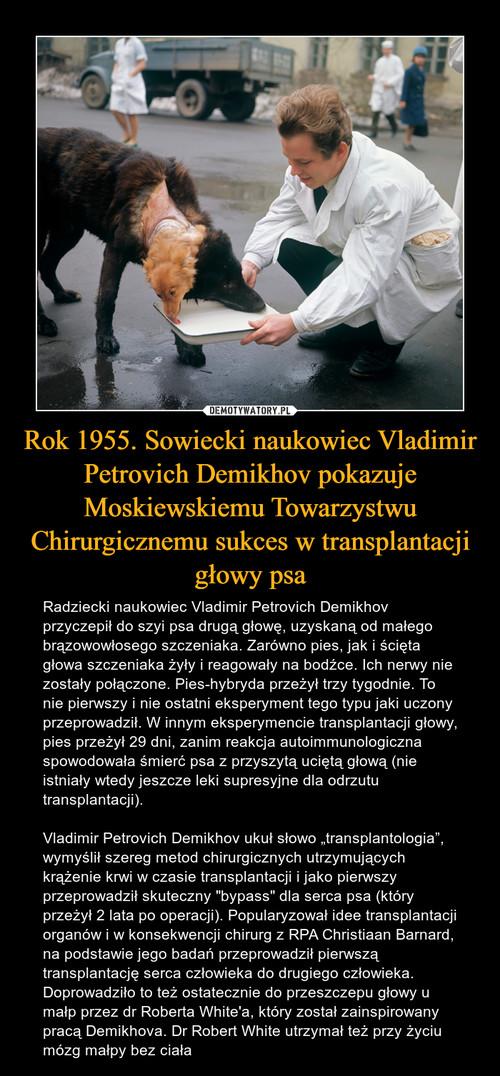 Rok 1955. Sowiecki naukowiec Vladimir Petrovich Demikhov pokazuje Moskiewskiemu Towarzystwu Chirurgicznemu sukces w transplantacji głowy psa