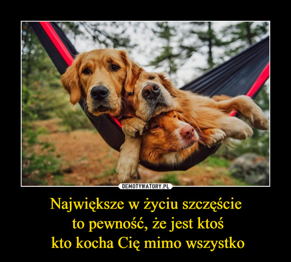 Największe w życiu szczęście to pewność, że jest ktoś kto kocha Cię mimo wszystko –