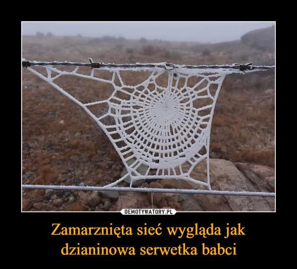 Zamarznięta sieć wygląda jakdzianinowa serwetka babci –