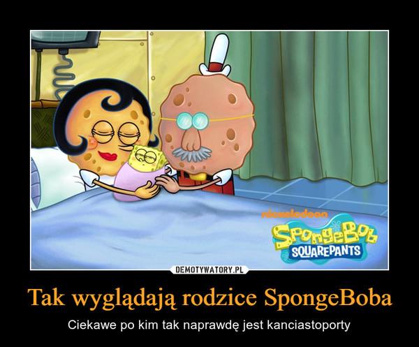 Tak wyglądają rodzice SpongeBoba – Ciekawe po kim tak naprawdę jest kanciastoporty
