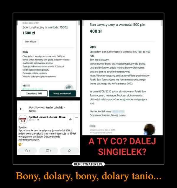 Bony, dolary, bony, dolary tanio... –  A TY CO? DALEJ SINGIELEK?