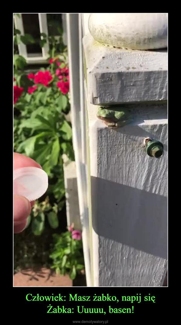 Człowiek: Masz żabko, napij sięŻabka: Uuuuu, basen! –