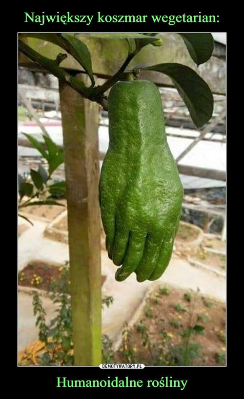 Największy koszmar wegetarian: Humanoidalne rośliny
