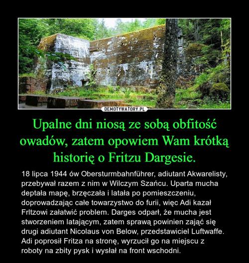 Upalne dni niosą ze sobą obfitość owadów, zatem opowiem Wam krótką historię o Fritzu Dargesie.