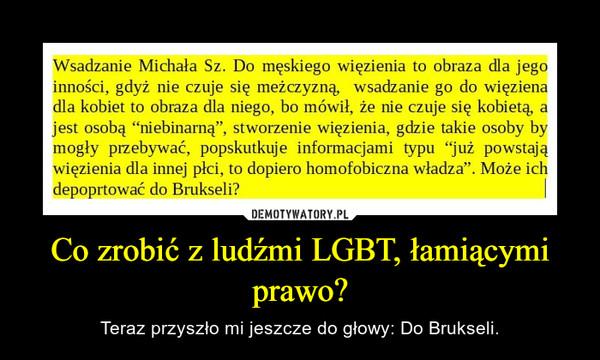 Co zrobić z ludźmi LGBT, łamiącymi prawo? – Teraz przyszło mi jeszcze do głowy: Do Brukseli.
